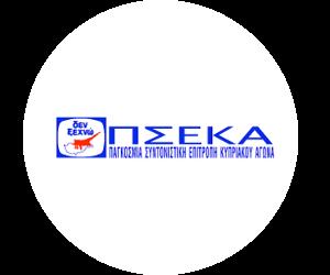 pseka-cyprus-logo